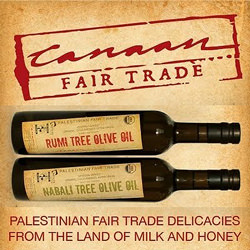 boost-for-palestinian-fair-trade-olive-oil