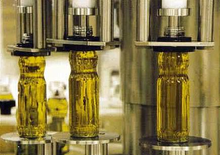 andalusia-fines-17-producers-eur2500-for-inferior-olive-oil