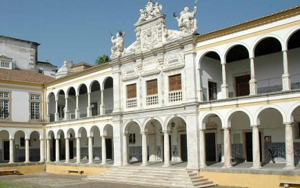 new-university-courses-in-portugal-focus-on-olive-oil-quality-sustainability