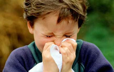 high-olive-pollen-hits-allergy-sufferers-in-jaen