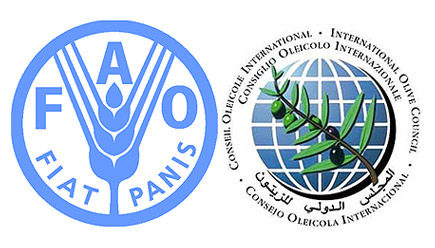 united-nations-field-reports-to-improve-olive-council-forecasts-united-nations-field-reports-to-improve-olive-council-forecasts