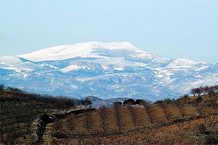 spains-sierra-del-moncayo-seeks-protected-designation-of-origin-status-sierra-del-moncayo