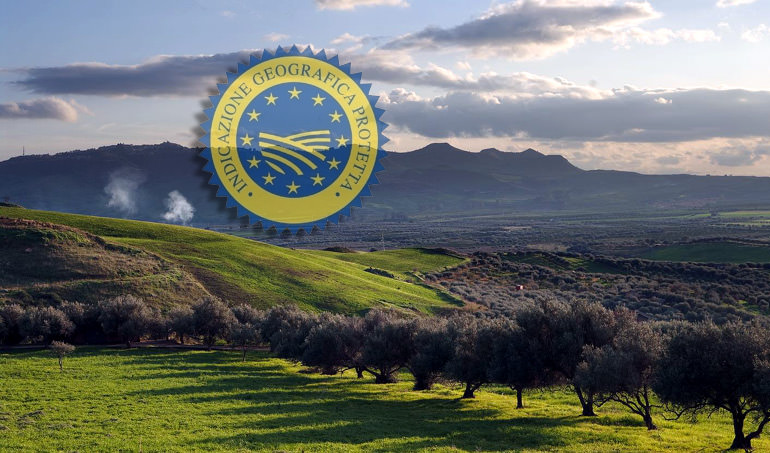olive-council-holds-meeting-on-geographic-indications