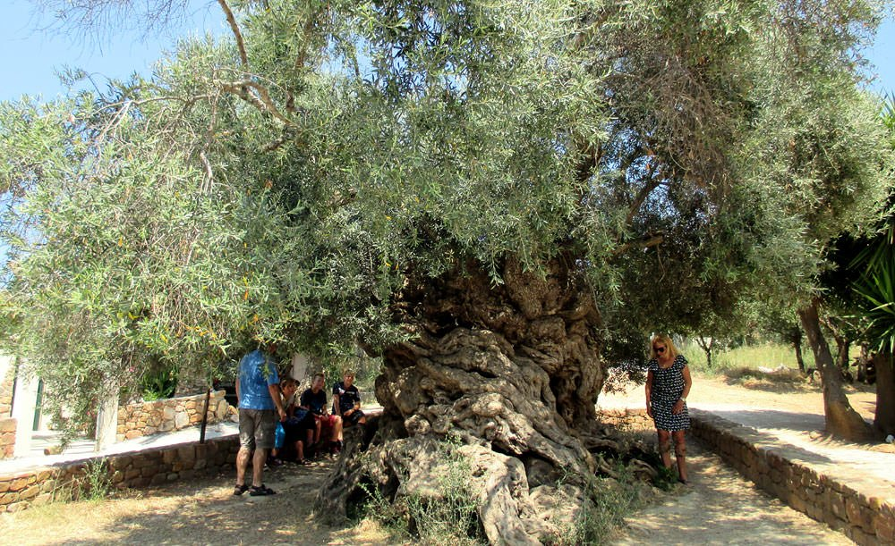 agroculinary-attractions-in-crete-span-ages