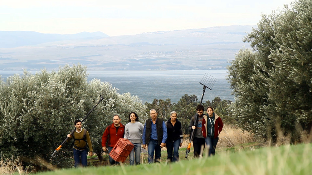 from-golan-heights-olive-farmer-sees-new-markets-for-his-skincare-line