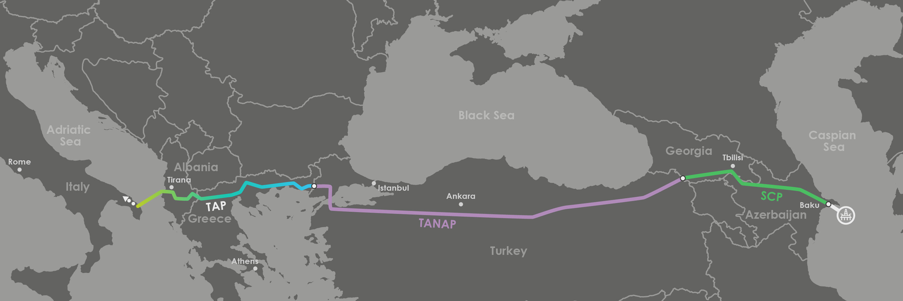 court-stops-removal-of-trees-for-puglia-pipeline